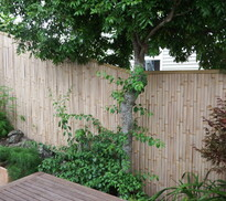 fence panels -  choose your style and order your sizes using a square meter price