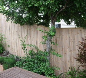 fence panels - stunning designs and reasonable pricing. choose your style and order your sizes using a square meter price