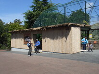 auckland zoo - bamboo structures