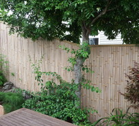 fence panels - shelter, privacy, functional, inspiring - the bambusero range